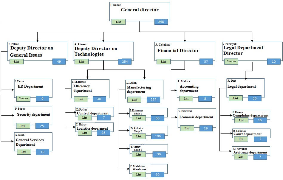 The company's organizational structure